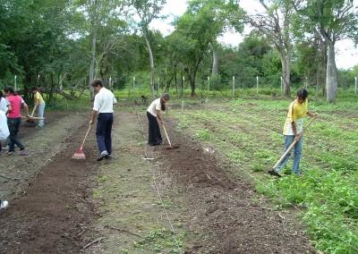 Alumnos trabajando en el huerto